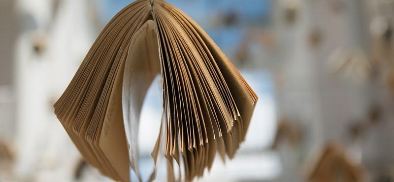 Ön szerint miért nem áll a por a könyvtárakban? Nézze, ilyen masinával tisztítják a könyveket – videó
