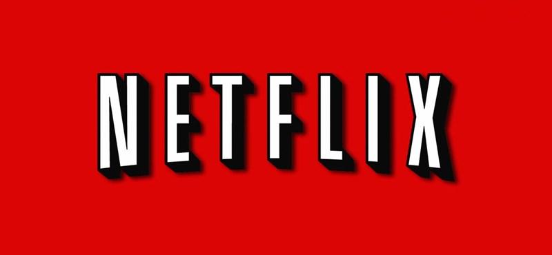Csak gyakorolni akarta a programozást, aztán jobb keresőt írt a Netflixhez, mint maga a Netflix