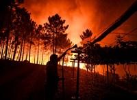 Őrizetbe vettek egy férfit, aki a portugáliai erdőtüzeket okozhatta