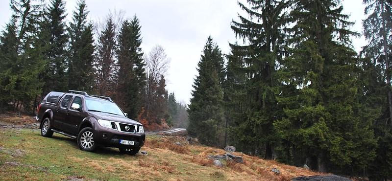 Nissan Navara V6 hosszú teszt: nagy test, nagy élvezet