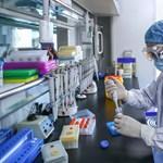 Az időseken is segít majd az új koronavírus-védőoltás?