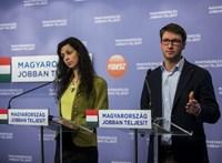 """A Fidesz a """"provokátorfigyelő"""" szellemi anyját indítja parlamenti mandátumért"""