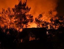 Tragikus az erdőtűzhelyzet Brazíliában, Sao Paulo füstbe merült