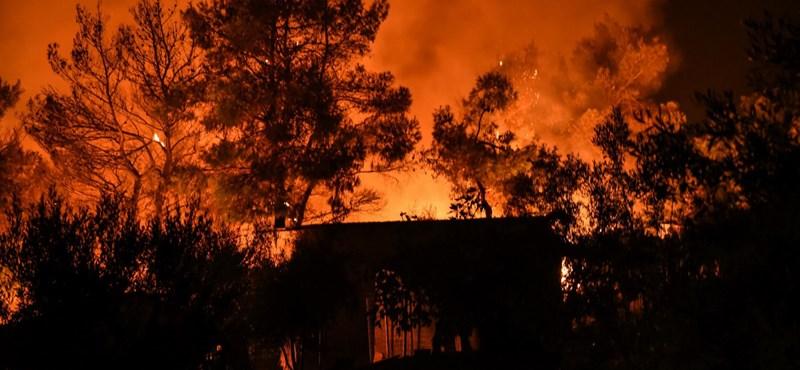 Újabb erdőtüzek lobbantak fel Görögországban