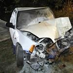 Fának csapódott egy autó Dömsödnél, egy ember meghalt