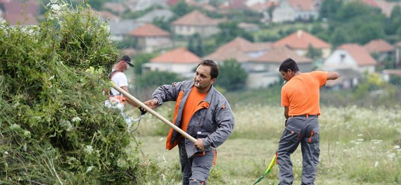 Romák lakta negyedekben dolgoznak a közérdekű munkára ítéltek Szekszárdon