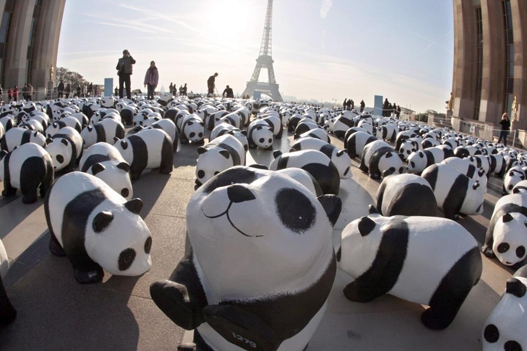 afp. Eiffel-torony 125 éves Nagyítás - pandák, WWF, Párizs, Franciaország, 2008.10.18.