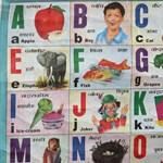 Vajon az Emminek megér majd 30 milliót a nyelvoktatás jövője?