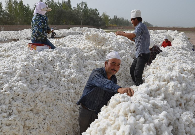Can we know for sure that our clothes were not made with forced labor?
