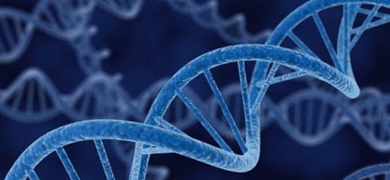 Jól van az ember, akit a világon elsőként kezeltek génszerkesztéssel