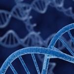 Ezt eddig nem tudtuk a DNS-ről: két módon is meghatározza, hogy kik vagyunk