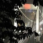 Ezt látnia kell! Japán fénytervező munkája az Erzsébet híd új díszkivilágítása