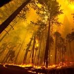 Még mindig lángol a Yosemite, füstben a turisták