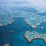 Kitaláltak valamit a haldokló Nagy-korallzátony megmentésére