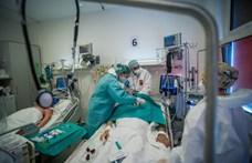 101 ember meghalt, 1376 új koronavírus-fertőzöttet regisztráltak