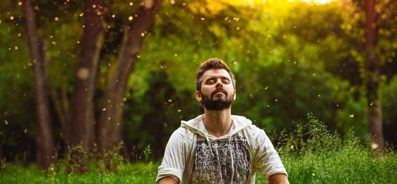 Magyar kutatás: a mindfulness segít legyőzni a stresszt