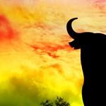 Ilyen egy spanyol bikaviadal - Nagyítás fotógaléria