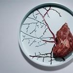 Bizarr tárolók a konyhában - hús a véres tálon