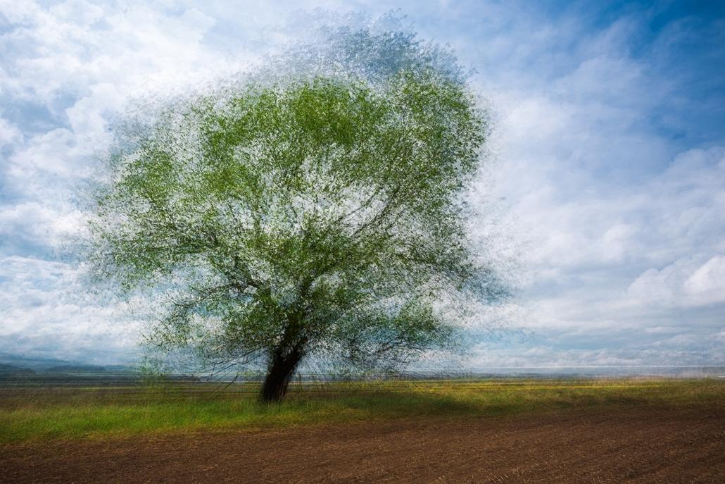 NE_! - IX. Tájak - 1. díj és Hazai tájkép különdíj - Egyszerű táj - Az Év Természetfotója 2014, nagyítás