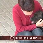 10 éves gyerek akasztott fel egy kutyát (videó)