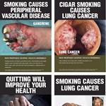 Elbukott a dohánylobbi, elrettentő dobozban árulják a cigit Ausztráliában - fotók