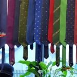 Guinness-rekordot ér egy debreceni nyakkendőgyűjtemény
