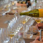A leghosszabb napot ünneplik a borászok
