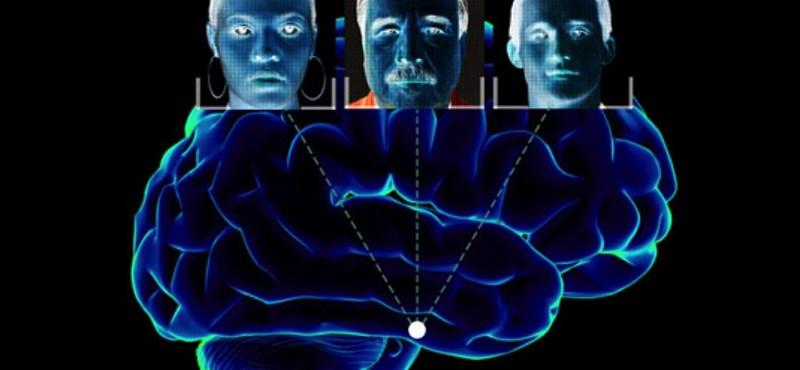 Van már olyan szoftver, amely arcfelismeréssel követ le bárkit a neten