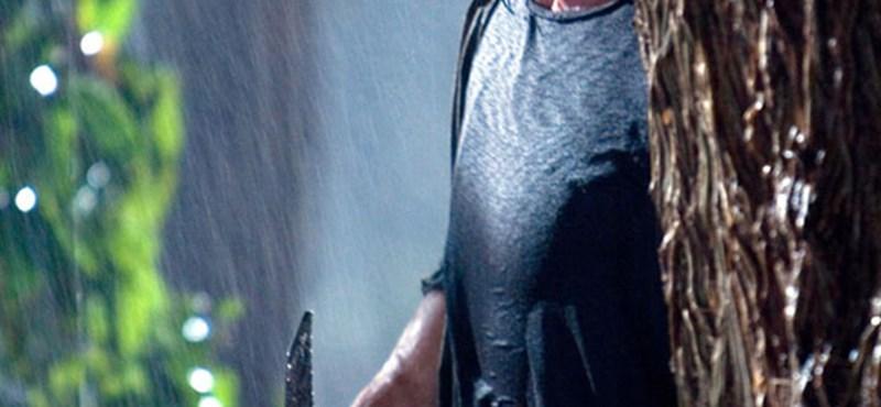Stallone elárulta az új Rambo-film címét