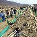 Srebrenicai mészárlás: Hollandia is felelős