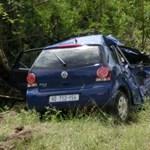 Elefánt végzett ki egy Volkswagen Polót – videó