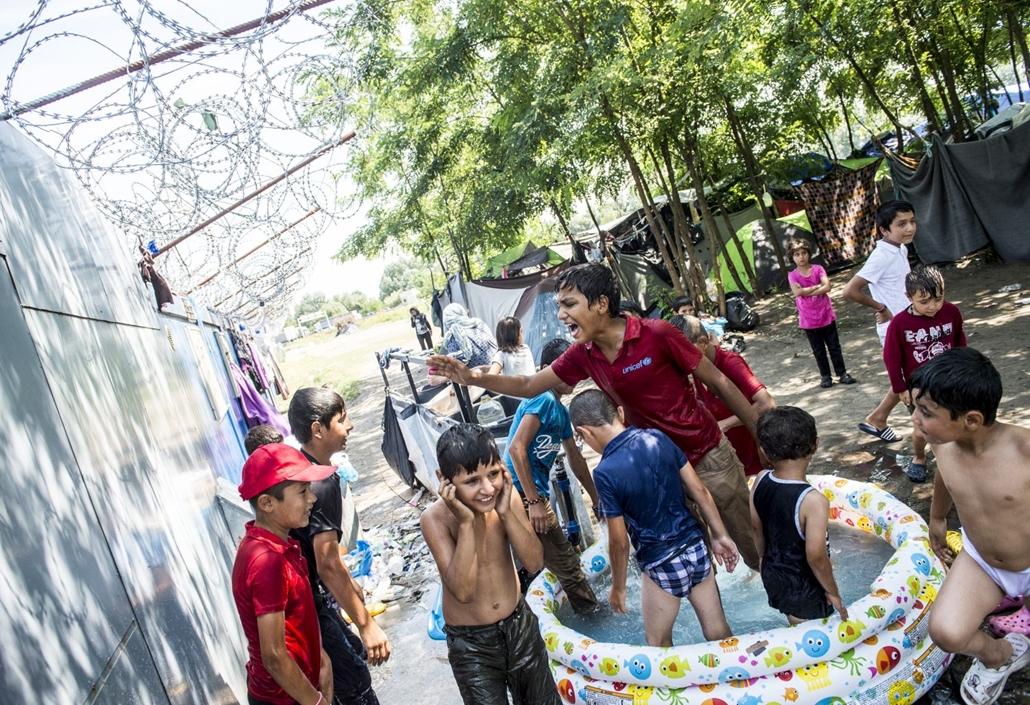 hvgbestof2016 - tg - A szerb-magyar határnál várakozó, nyugatra tartó menekültek. hvgbestof2016, nagyítás