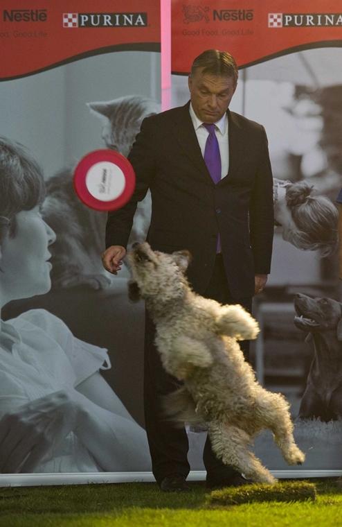 2012.08.24. Orbán Viktor miniszterelnök a Nestlé Purina állateledelgyár büki gyárának bővítése alkalmából rendezett bokrétaünnepen - évképei