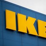 Erdőt vett az IKEA
