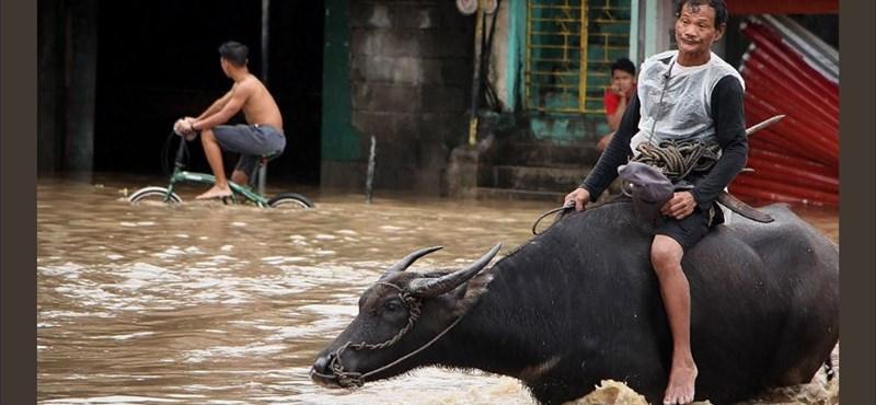Természeti katasztrófa a Fülöp-szigeteken: az áldozatok száma megduplázódott