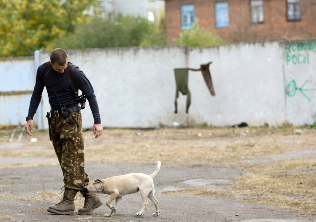 afp. hét képei - Mayorovo, Ukrajna 2014.10.01. A dog attacks an Ukrainian serviceman at a checkpoint near  Mayorovo in Donetsk region on October 1, 2014. Ten civilians died in attacks in Ukraine's rebel-held city of Donetsk on Wednesday, including from a