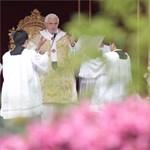 Bukásra állnak a papok latinból