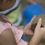 Nitrites kásával mérgezett meg gyerekeket egy kínai óvónő