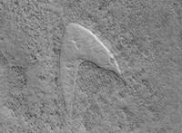 Megtalálták a Marson a Star Trek logóját