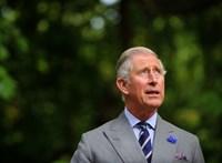 Megszólalt a koronavírusból felgyógyult Károly herceg (videó)