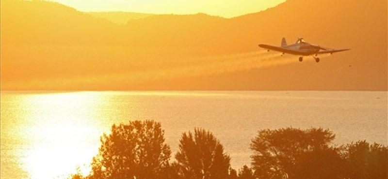 Jövő héten már kezdődik a szúnyogirtás a Balatonnál