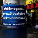 Recessziót és munkanélküliséget jósol Magyarországnak az OECD