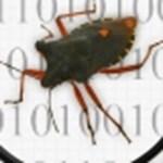 A tíz leghíresebb és legkomolyabb számítógépes bug