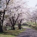 Fürdők, időutazás, férfiuralom - beppui ajánló