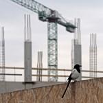 Tovább hasít az építőipar. Legfőképp a közép-magyarországi régióban