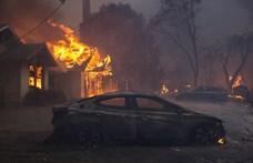 Miley Cyrus háza is leégett, Neil Young dühödten szidta Trumpot