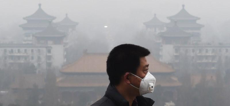 Nem csak asztmásak leszünk, el is butulhatunk a légszennyezés miatt
