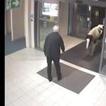 Videó: Miért nem hagyják már békén a rendőrök ezt az aranyos lovacskát?