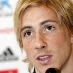Di Matteo: Fernando Torresnek pszichés gondjai vannak