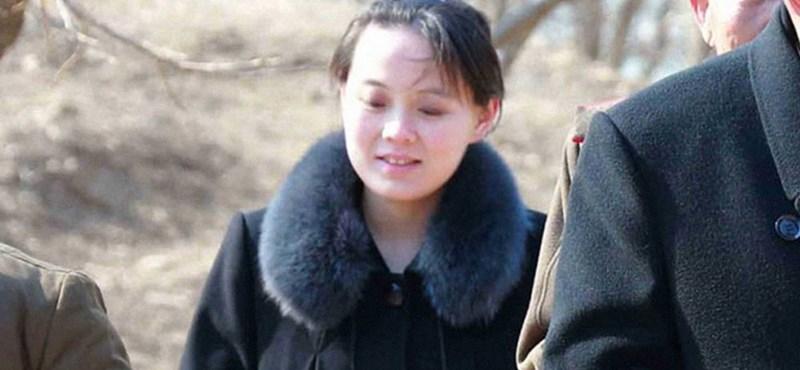 Kim Jo Dzsong: Észak-Korea hercegnője